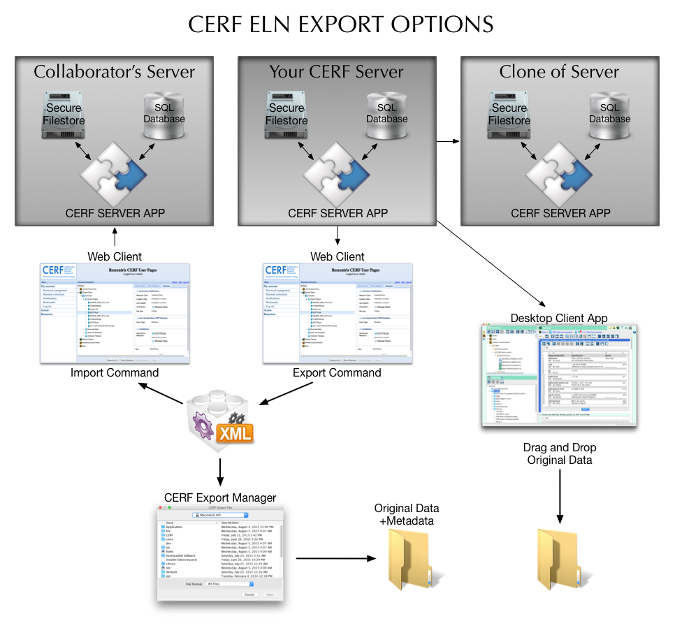 CERF ELN has several options to export for ease of data management